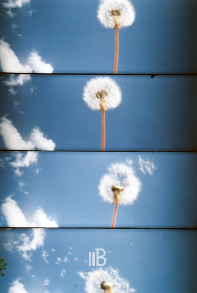 supersampler-6